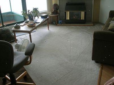 hoe werkt tapijtreiniger